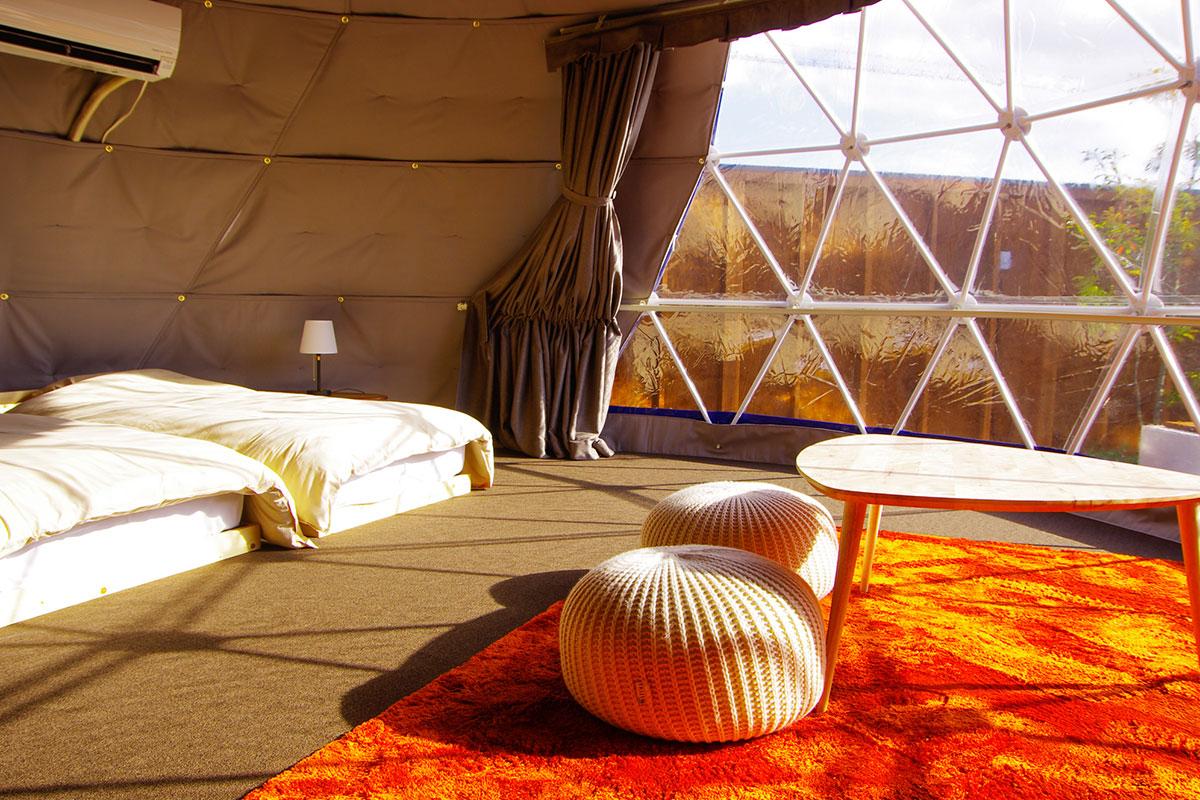 シングルドーム室内