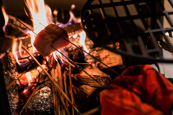 鶏の藁焼き